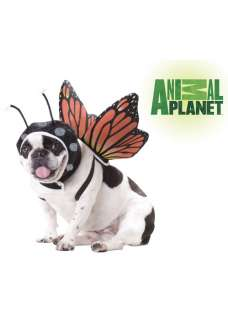 Animal Planet Butterfly Dog Costume Halloween Costume