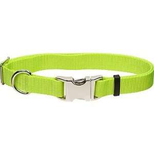 com Coastal Pet Metal Buckle Nylon Adjustable Personalized Dog Collar