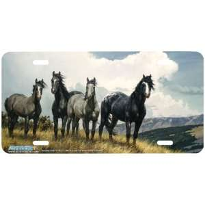 Amazing Grays IV Horse Art License Plate Car Auto Front Novelty Tag by