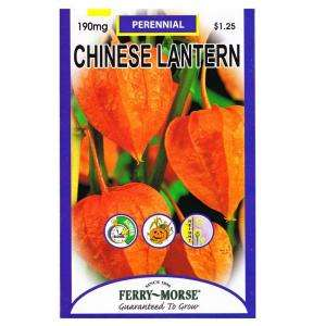 Ferry Morse Chinese Lantern Seed 1032