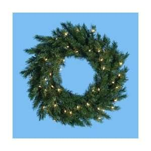 48 LED Lighted Classic Pine Artificial Christmas Wreath   Warm White