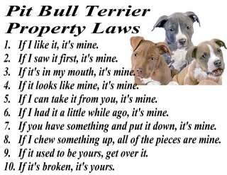 PIT BULL TERRIER PUPPY DOG BREED PROPERTY LAWS T SHIRT